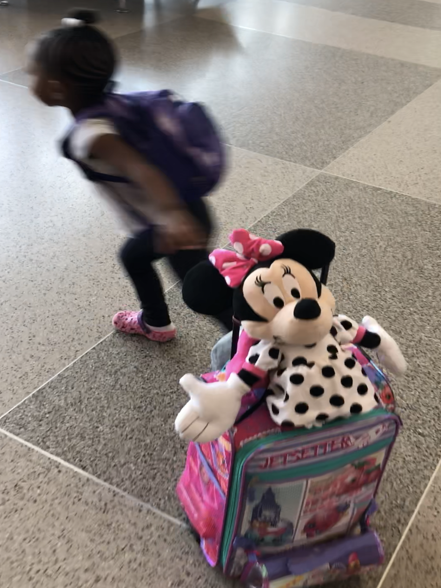 Minnie mouse airport luggage