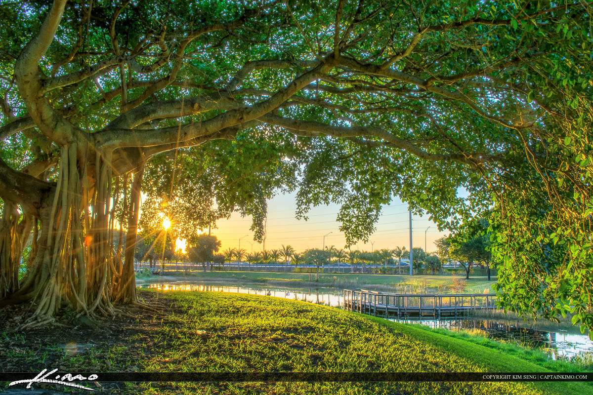 West Palm Beach | Product Categories | Royal Stock Photo