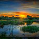 Peaceful Waters Sanctuary Wellington Florida Wetlands