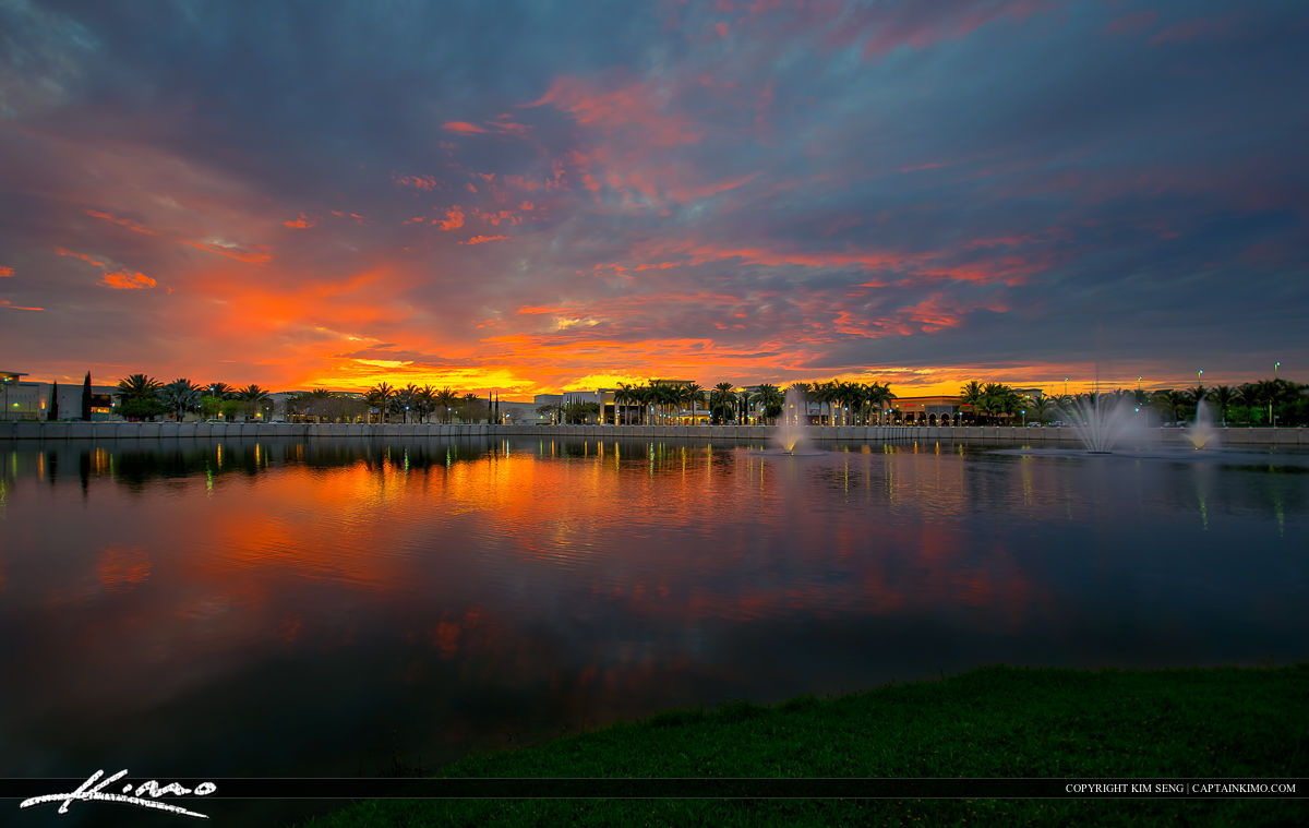 Palm Beach Gardens Product Categories Royal Stock Photo Page 14