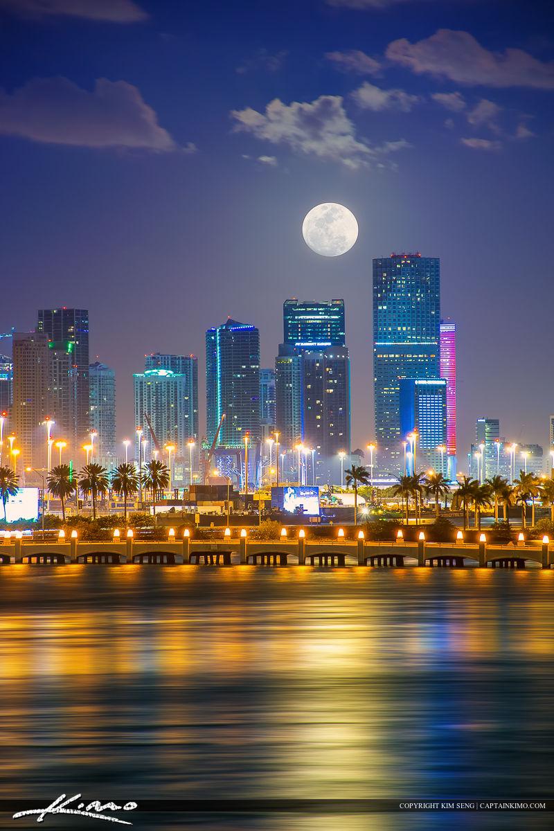 Blue Moon Miami South Beach