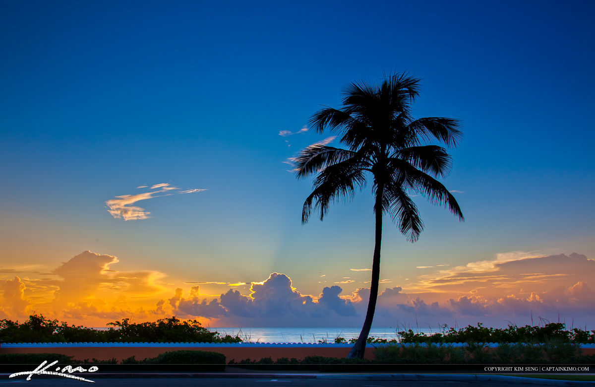 Buy Business In Palm Beach County
