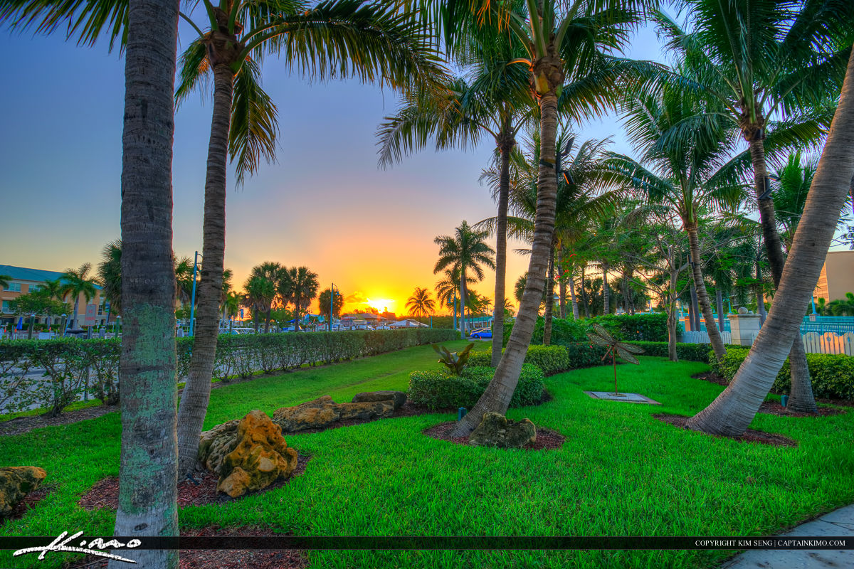 Boynton Beach | Product Categories | Royal Stock Photo | Page 4