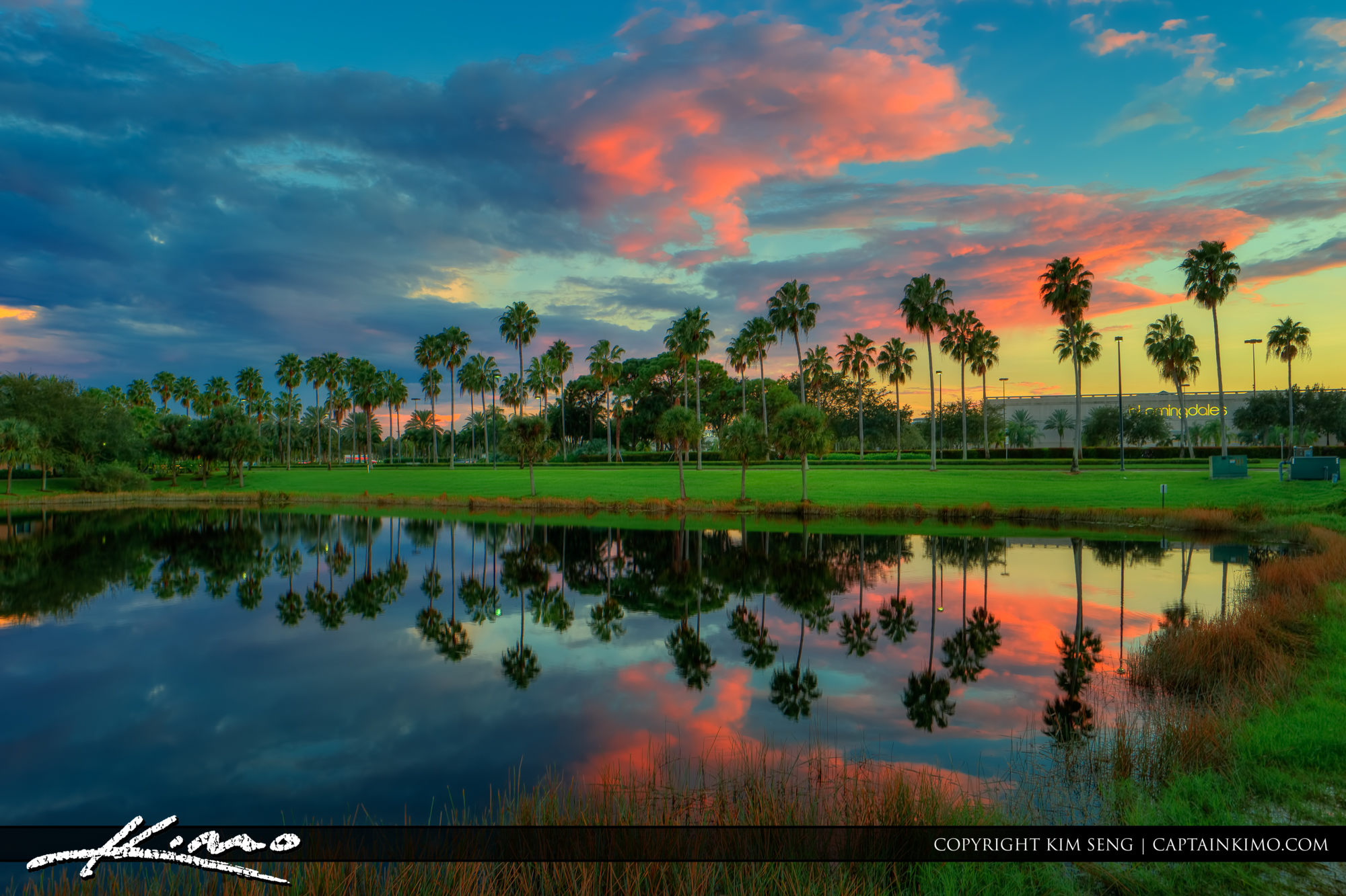 Palm Beach Gardens | Product Categories | Royal Stock Photo | Page 11