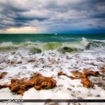 Wave Breaking Over Rock at Jupiter Beach