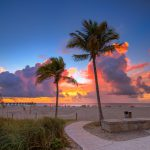 Coconut Tree Sunrise Pompano Beach Pier