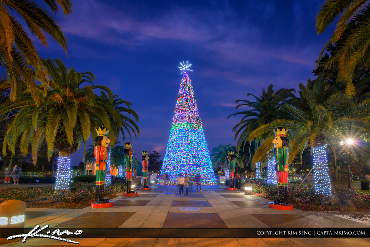 orlando downtown lake eola christmas tree 2016 royal