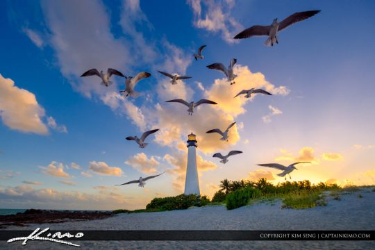 Cape Florida Lighthouse Key Biscayne Florida Sunset Seagulls