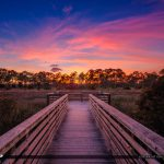 Boardwalk Sunset at Loxahatchee Florida Acreage Natural Area
