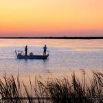 Parkland Florida Fishing at Marsh