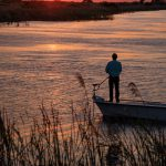 Parkland Florida Fishing at Sunset