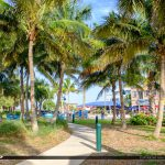 Coconut Trees Sideway Jetty Park Fort Pierce Florida
