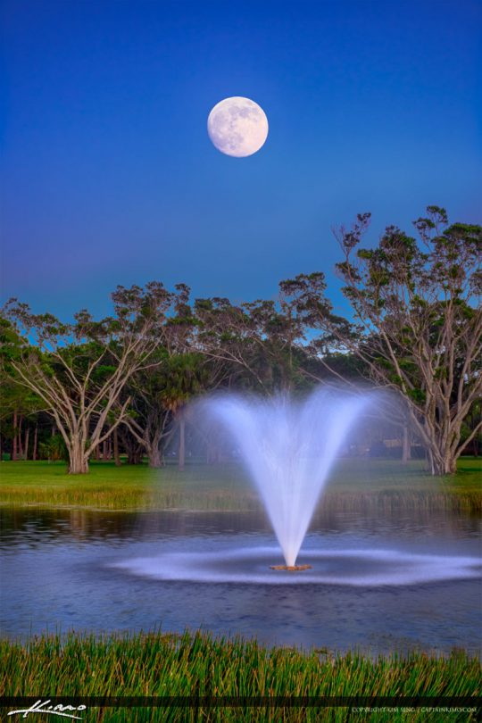 Moon rising Over PGA National Park Palm Beach Gardens