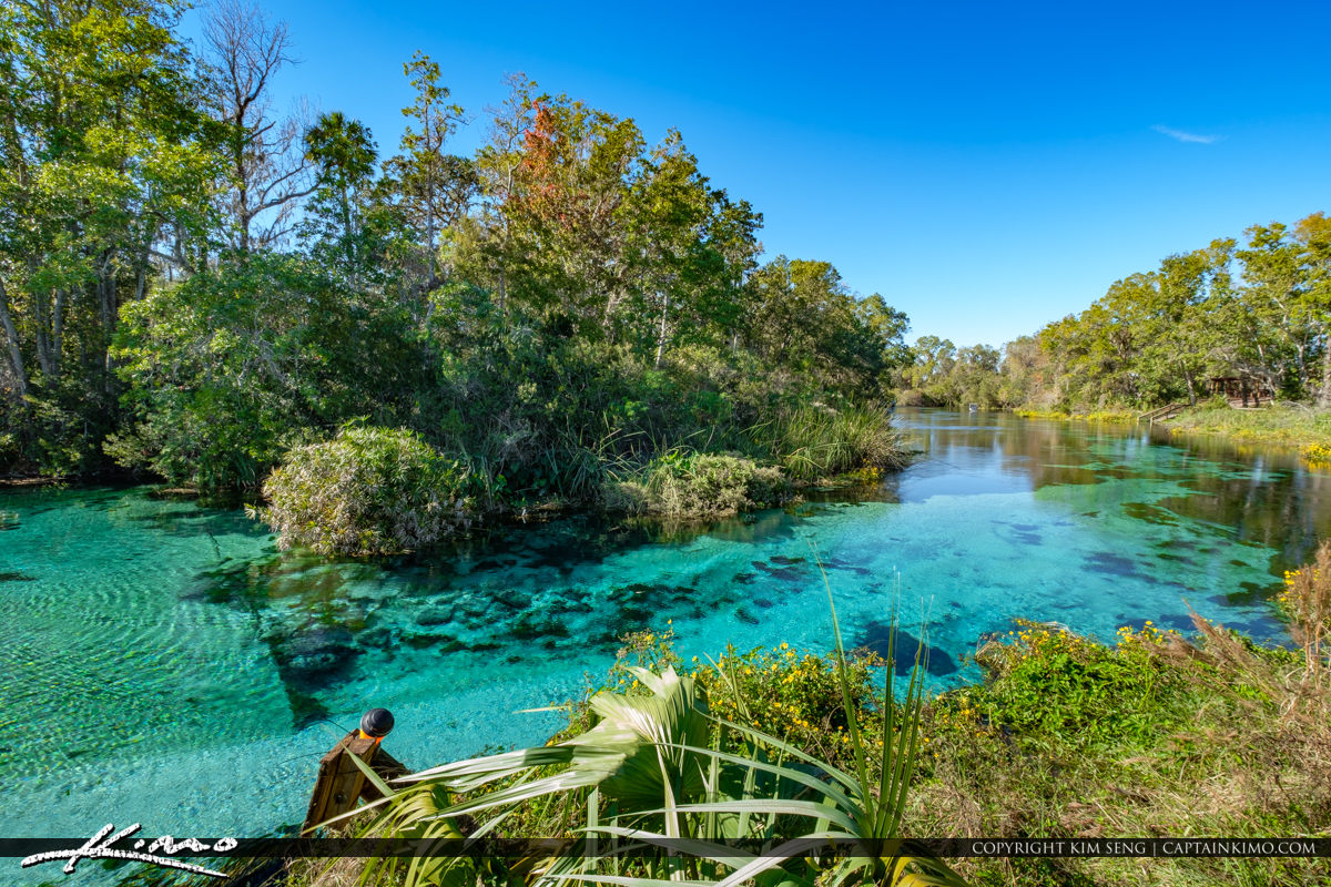 Weeki Wachee To West Palm Beach
