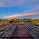 Justin Wilson Park Palm City Boardwalk Wetlands