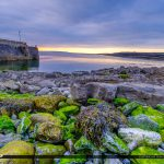Island Ferry Doolin Ireland Algea and Seaweed