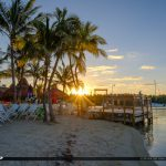 Coconut Tree Sunrise Gilberts Resort Key Largo Florida Keys
