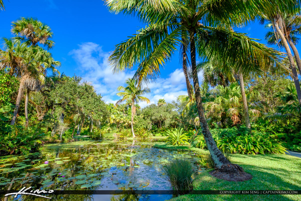 Indian River County | Product Categories | Royal Stock Photo | Page 4