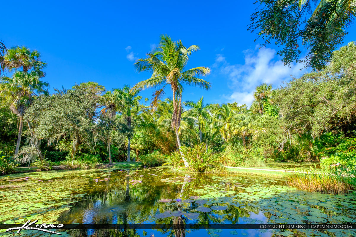 Vero Beach | Product Categories | Royal Stock Photo | Page 13