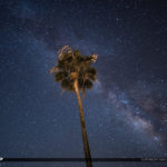 Florida Palm Tree Milkyway Lake Okeechobee