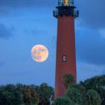 Jupiter Lighthouse Moonrise and Palm Trees