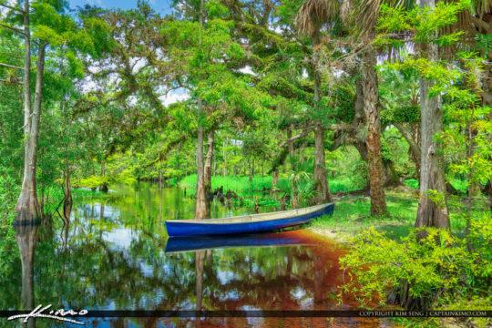 Canoe Fisheating Creek River Green Cypress and Oak Palmdale Flor