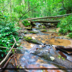 Cascade Falls Jobs Cabin North Carolina Falls Creek Cascades Nat