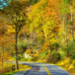 Blue Ridge Parkway Road Fall Colors Bright Orange Colors North C