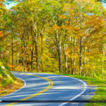 Blue Ridge Parkway Road Fall Colors Beautiful Orange Colors Nort