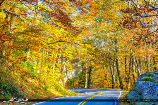 Blue Ridge Parkway Road Fall Colors Yellow Colors NC