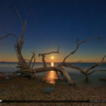 Beautiful Moonrise at Jekyll Island Driftwood Beach