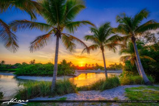 Coconut Tree Sunset Jupiter Inlet Park Florida