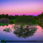 Delray Beach Preserve Early Morning Sunrise