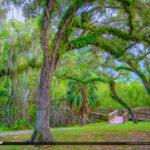 Enchanted Forest Elaine Gordon Park North Miami Florida