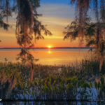 Mount Dora Florida Sunset Lake Dora Spanish Moss