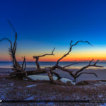 Driftwood at the Beach at Sunrise