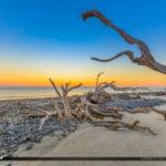 Best Driftwood Beach
