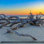 Best Sunrise on Driftwood Beach