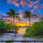 Loxahatchee River Jupiter Island Sunset Coconut Trees