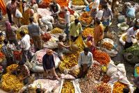 Calcutta Flower Vendors