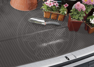 Cargo Mat, All Weather - Lexus (PT908-48101-14)