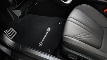 Floor Mats, Carpet - Lexus (PT208-24152-24)