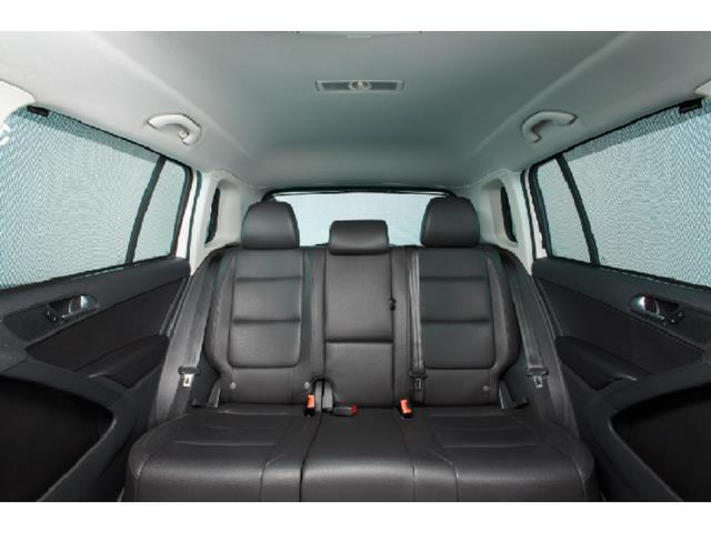 Hatch Window And Hatch Area Side Windows - Volkswagen (5N0-064-365-A)