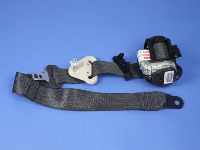 Belt & Retractor, Left, Right