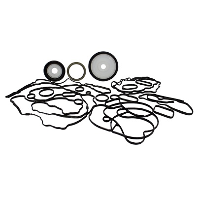 Lower Gasket Kit