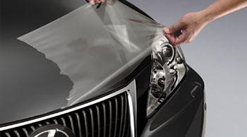 Paint Protection Film, Fenders