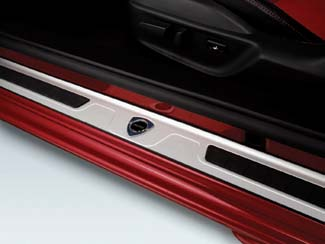 Door Sill Trim Plates