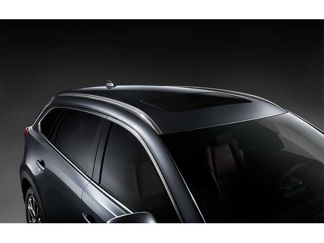 Roof Rack Side Rails - Mazda (0000-8L-N10B)