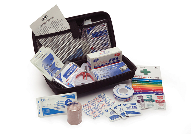 First Aid Kit, Large - Kia (00083-ADU22)