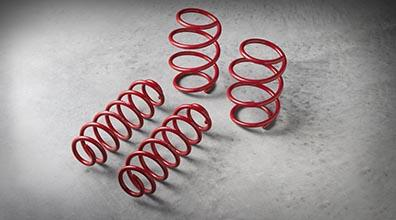 Trd Performance Lowering Springs - Toyota (PT843-1C170)